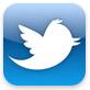 Официальное приложение twitter